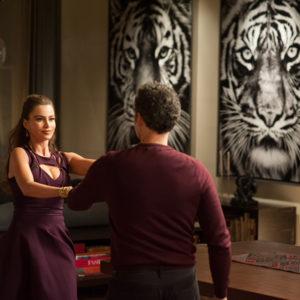 Gewinnspiel «Fading Gigolo» Blu-ray gewinnen - Sofia Vergara und John Turturro