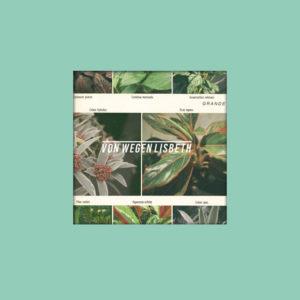 indiepop-band-von-wegen-lisbeth-mit-dem-debuet-album-grande-cover