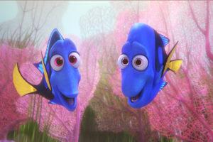 verlosung-findet-dorie-auf-blu-ray-zu-gewinnen